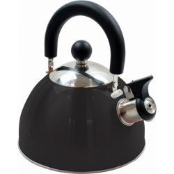 BOUILLOIRE SIFFLANTE DELUXE STEEL WHISTLING KETTLE
