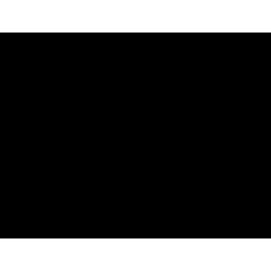 SPORK BIOPLASTIC